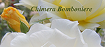 chimerabomboniere.it